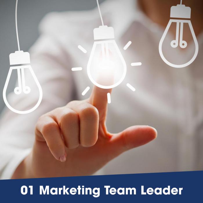 Tuyển dụng Marketing Team Leader ngành Thẩm mỹ