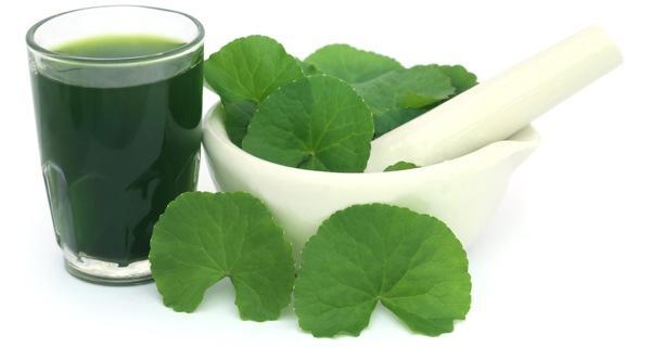 3 cách hữu hiệu để trị mụn bằng rau má